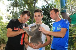 Davide Forè, Marijn Kremers and Daniel Bray meeting Wolverine the Koala at the Currumbin Wildlife Sanctuary (Pic: Coopers Photography)