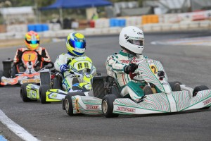 Pole Position winner Chris Farkas is the man to beat in Rotax 125 Heavy (Pic: Coopers Photography)